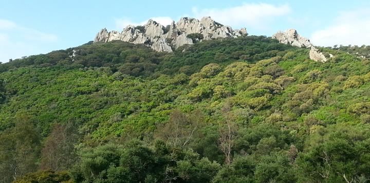 Sierra de Marbella